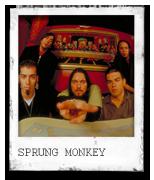 Sprung Monkey